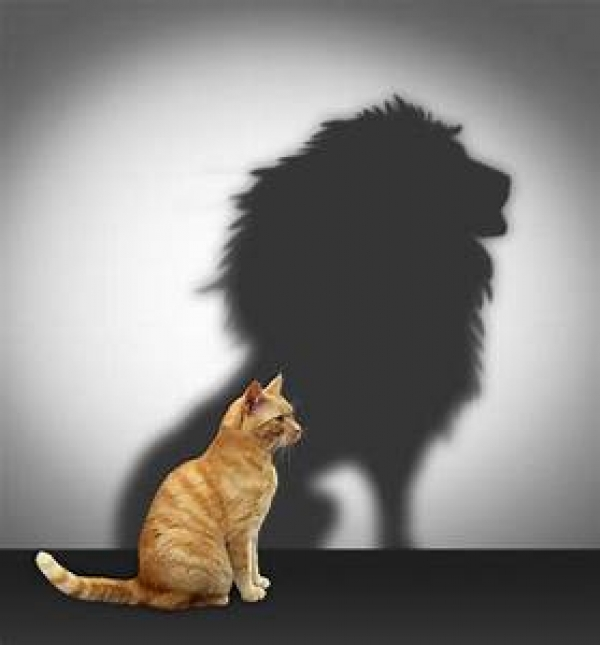 Troubles, Choices and Change takes Courage